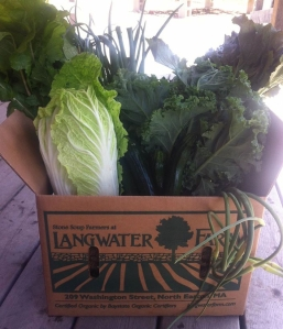 A box of organic spring vegetables from Langwater Farm.