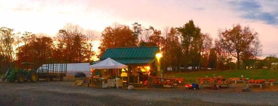 autumn farmstand afternoon sun