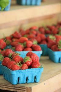 more-certified-organic-strawberries