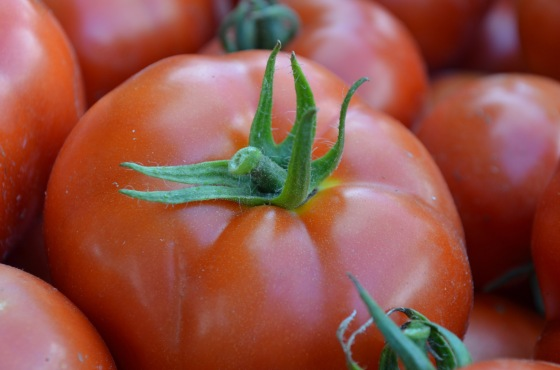 red tomato close up 1