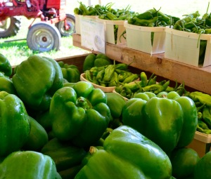 green pepper display