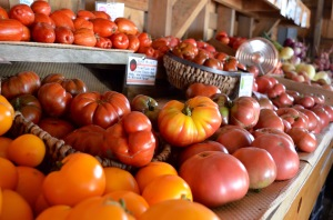 heirloom tomato display striped german center