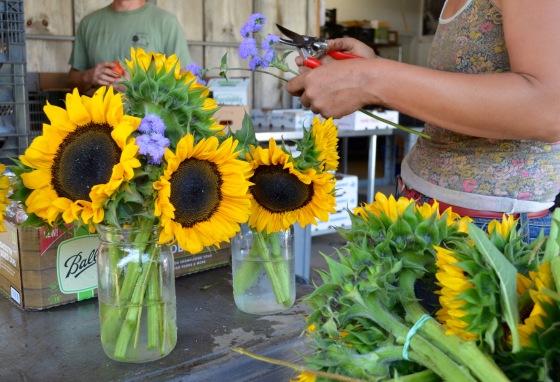 jen making sunflower ageratum vases