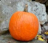 carving pumpkin stone wall cloes up