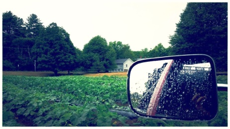 view out the farm truck