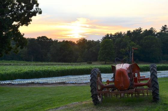 2018 FTT tractor sunset