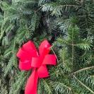 christmas balsam wreath red bow closeup