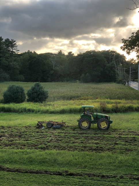 elm st field summer sunset turning in cover crop tractor large