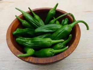 pixabay shishito peppers