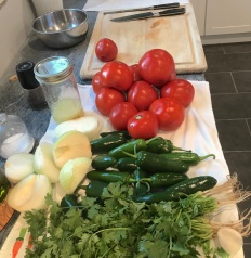 salsa recipe development kitchen