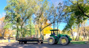 kate hay wagon