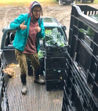 liz unloading kale truck