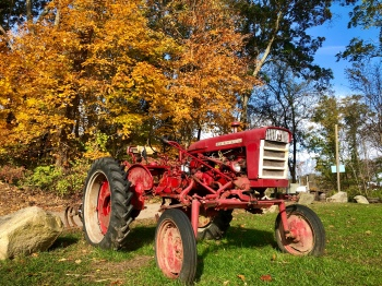 red tractor fall yellow leaves landscape