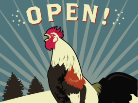 pawtucket rooster OPEN